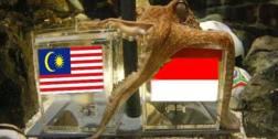 https://r3fin3.files.wordpress.com/2010/12/malayasia-vs-indonesia-paul-2.jpg?w=300